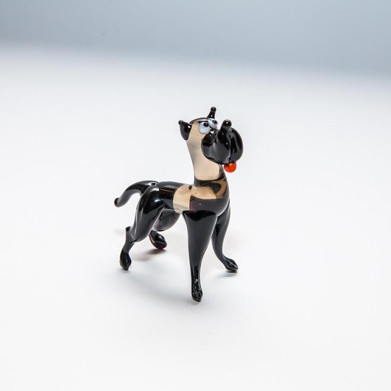 midi-dog-06
